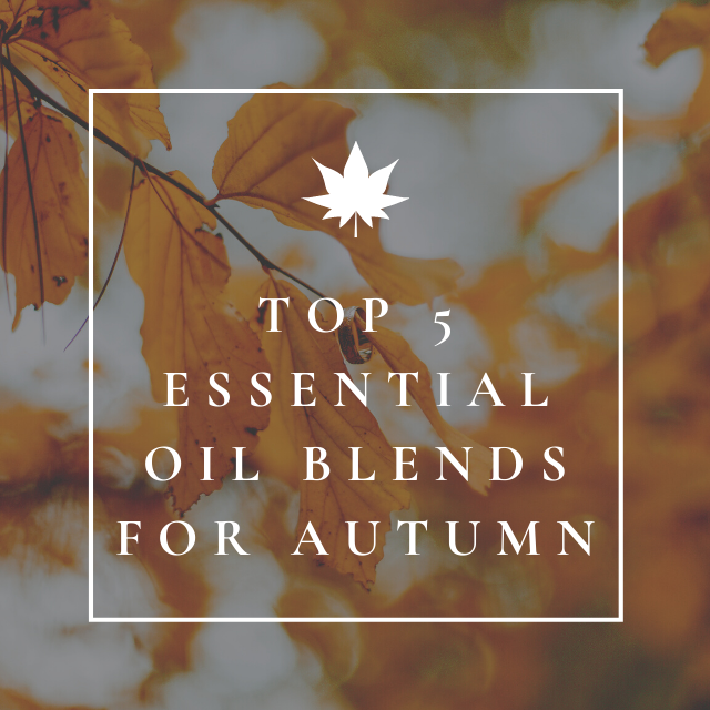 Top 5 essential oil blends for autumn